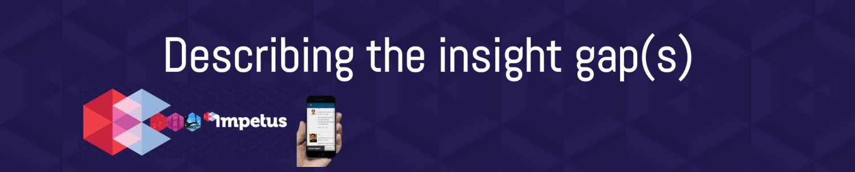 Describing the Insight Gap(s)