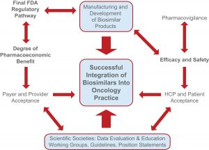 Parameters influencing the successful uptake and integration of biosimilars into US oncology practices