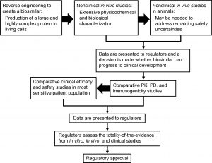The biosimilar development process (Biologics)