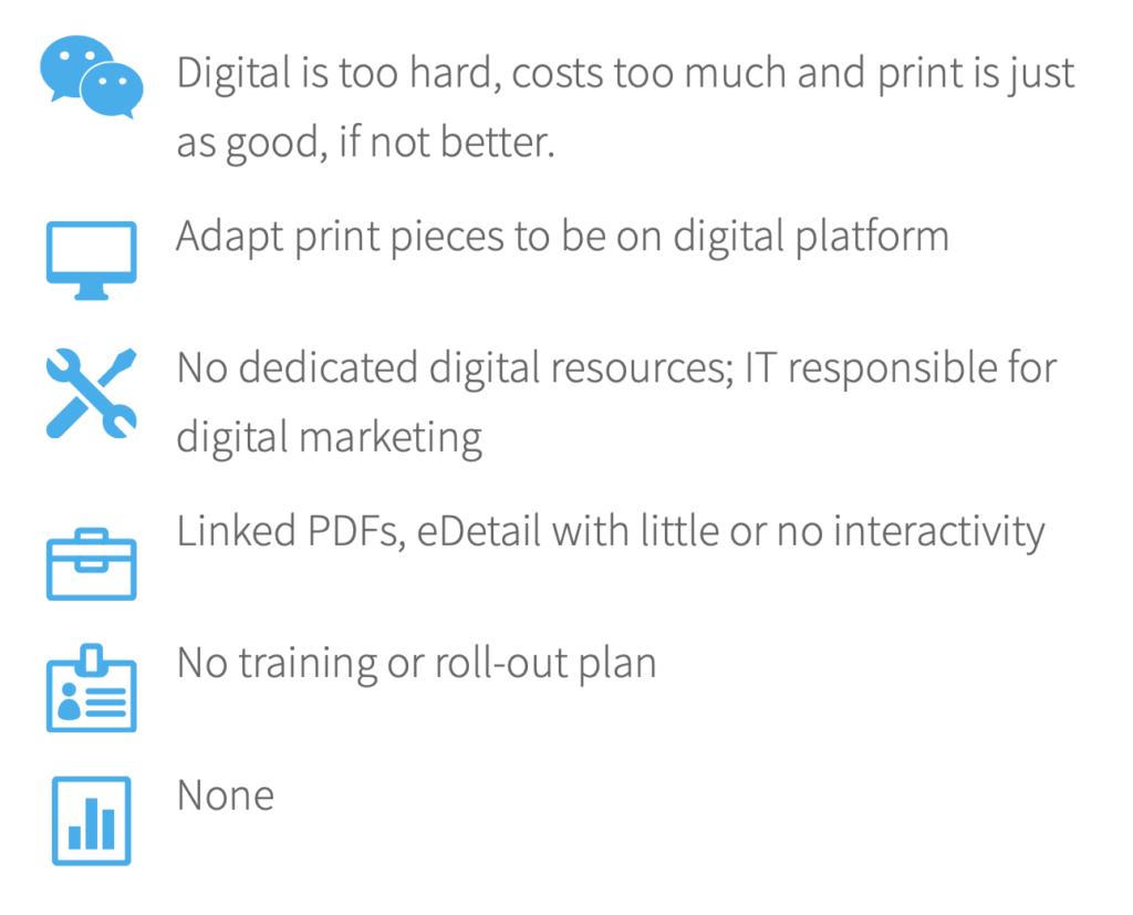 Digital maturity beginners
